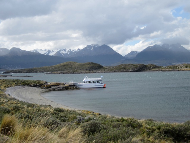 Boat tour of the Beagle Channel