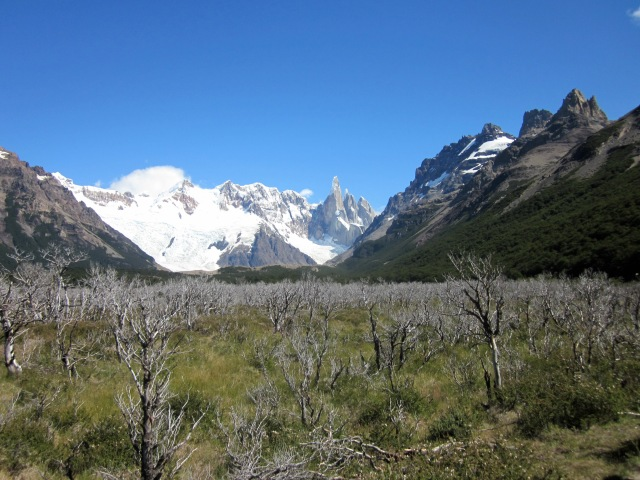 Looking at Cerro Torre