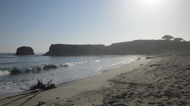 Beach at Andrew Molera state park