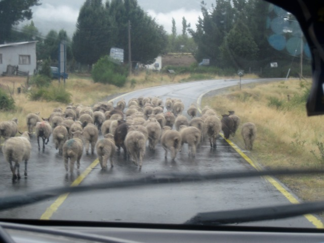 Only in Patagonia